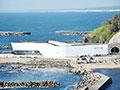 加茂水族館 魚匠ダイニング沖海月